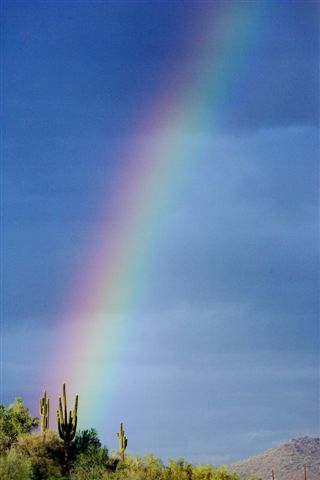 A rainbow appears over the desert near Phoenix. (CNS photo by Craig Robinson)