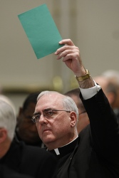 Archbishop Joseph F. Naumann of Kansas City, Kan., signals that he would like to address the meeting of the U.S. Conference of Catholic Bishops in Baltimore Nov. 11. (CNS/Nancy Wiechec)