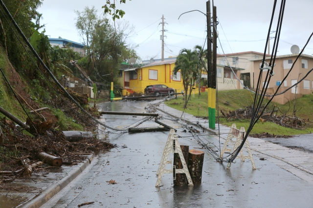 Downed power lines are seen Oct. 24 in Las Marias, Puerto Rico, more than one month after Hurricane Maria devastated the island. (CNS/Bob Roller)